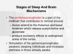 stages of sleep and brain mechanisms32