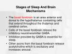 stages of sleep and brain mechanisms35