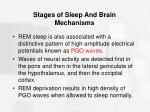 stages of sleep and brain mechanisms42