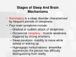 stages of sleep and brain mechanisms48