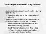 why sleep why rem why dreams55