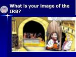 what is your image of the irb