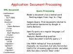 application document processing