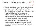 possible scdn leadership roles