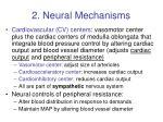2 neural mechanisms