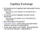 capillary exchange64