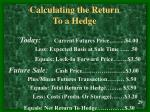 calculating the return to a hedge