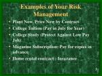 examples of your risk management