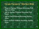 grain farmers market risk