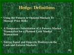 hedge definitions