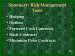 summary risk management tools