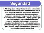 seguridad2
