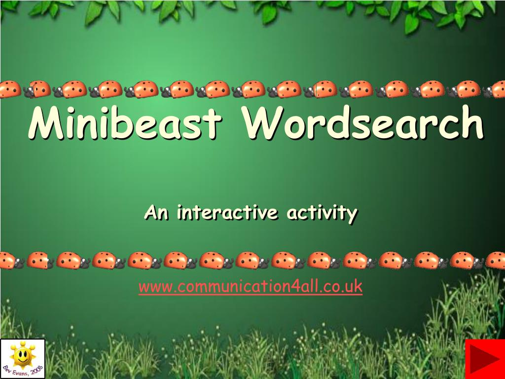 minibeast wordsearch l.