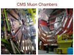 cms muon chambers