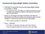 commercial spaceflight safety committee