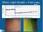 slime light growth fuel loss