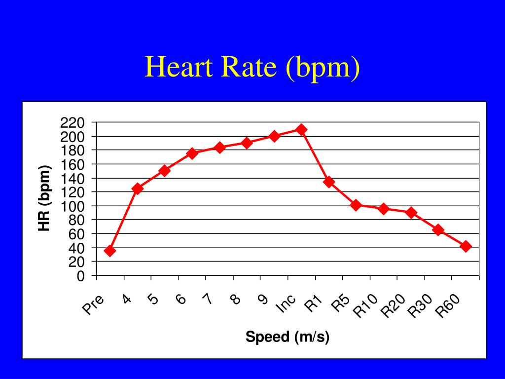 heart rate bpm l.