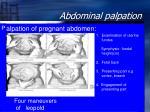 abdominal palpation