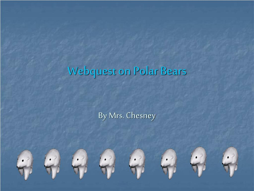 webquest on polar bears l.