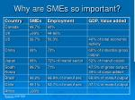 why are smes so important4