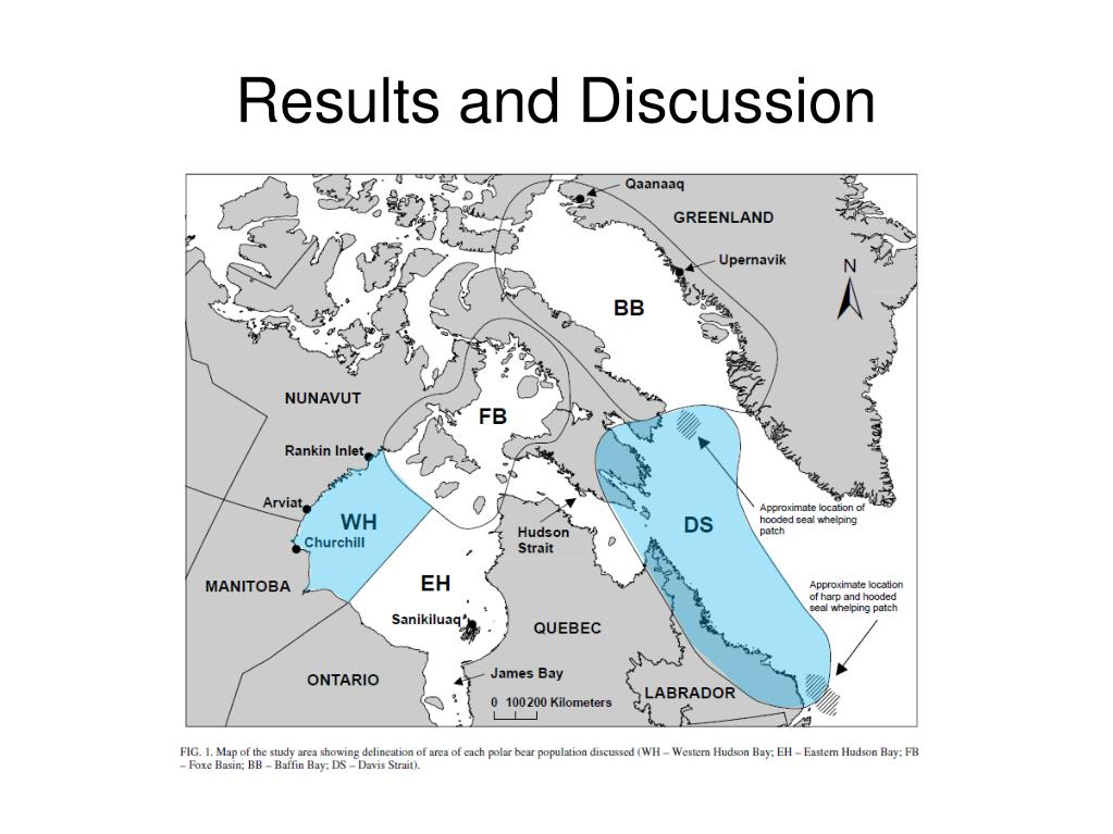 Results and Discussion