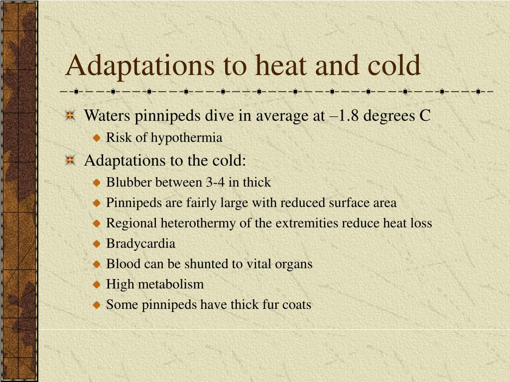 Adaptations to heat and cold