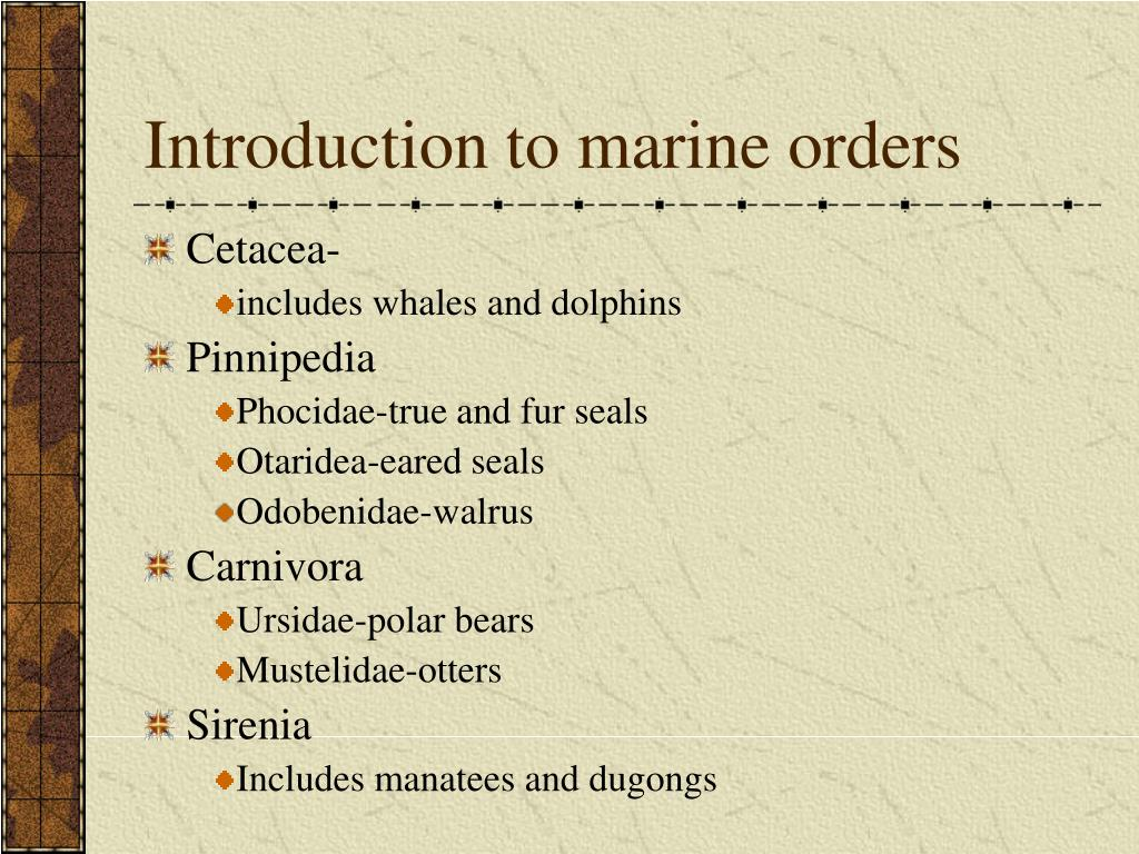 Introduction to marine orders