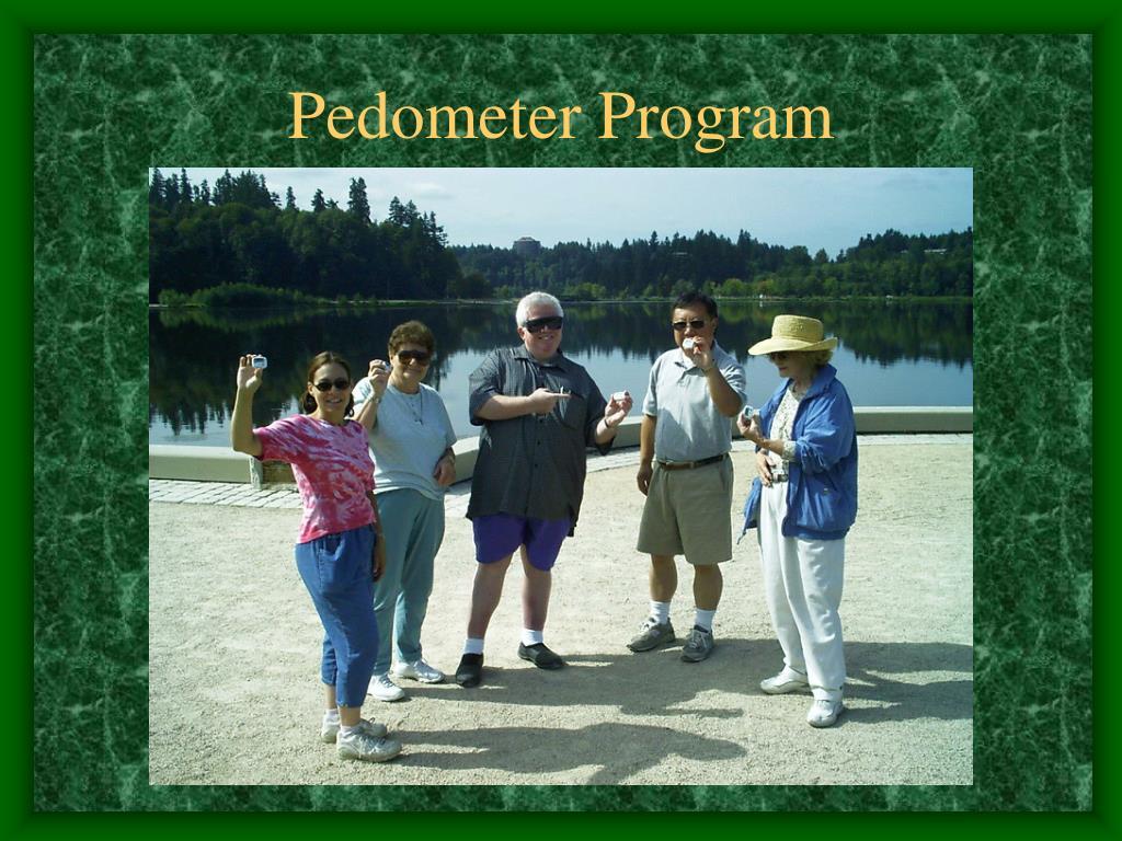 Pedometer Program