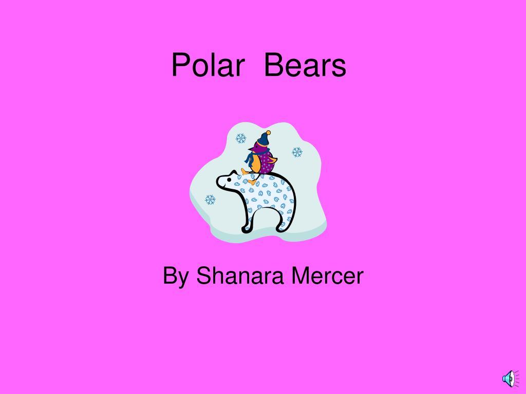 polar bears l.