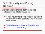 5 3 elasticity and pricing decision