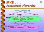 spice assessment hierarchy