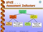 spice assessment indicators