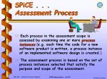 spice assessment process