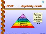 spice capability levels