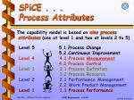 spice process attributes