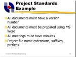 project standards example