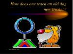 how does one teach an old dog new tricks