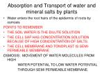 absorption and transport of water and mineral salts by plants