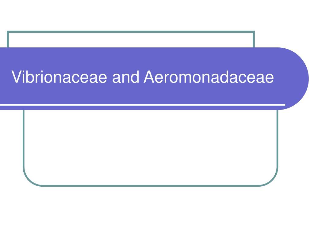 vibrionaceae and aeromonadaceae l.