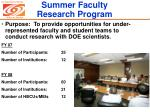 summer faculty research program
