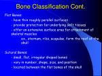 bone classification cont