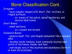 bone classification cont6