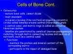 cells of bone cont