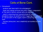 cells of bone cont20