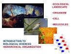 introduction to biological sciences hierarchical organization