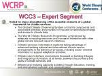 wcc3 expert segment