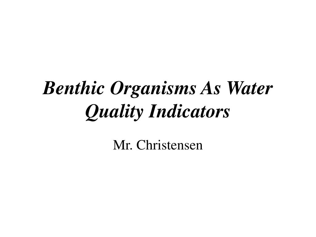 benthic organisms as water quality indicators l.