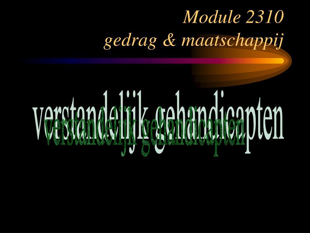 module 2310 gedrag maatschappij l.