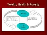 wealth health poverty