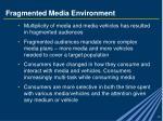 fragmented media environment